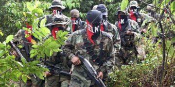 Guerrilla del ELN en Colombia anunció paro armado en el país. Foto: América Digital /Archivo