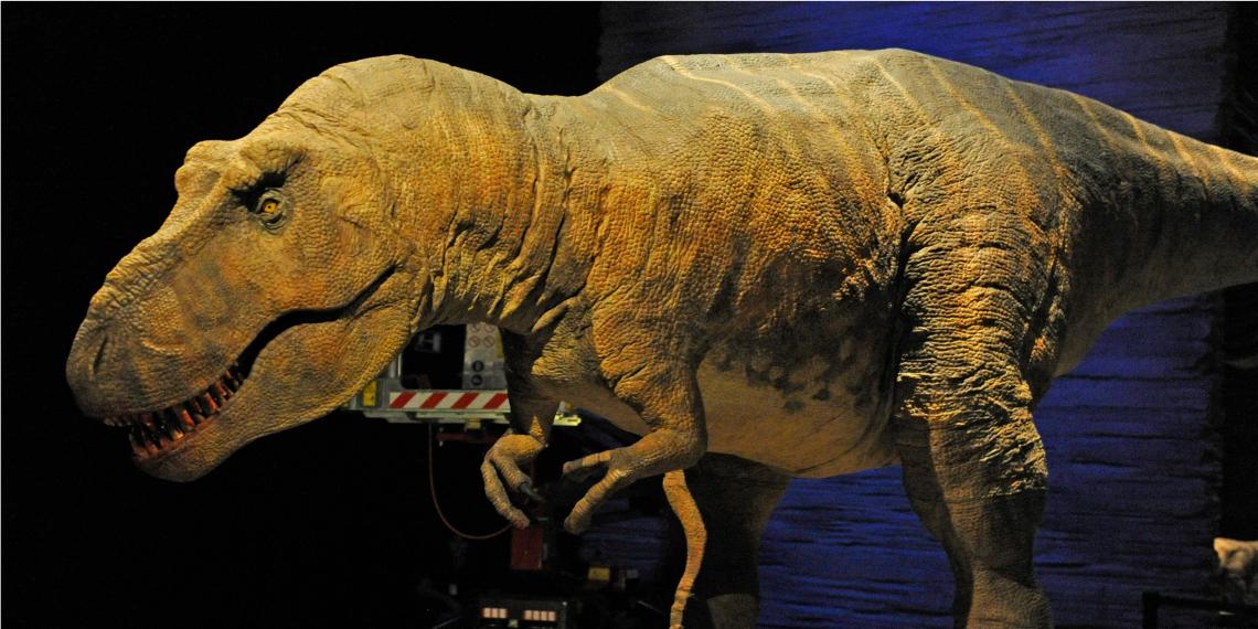 Tiranosaurio Rex. Foto: EFE