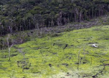 Deforestación en Colombia. Foto: EFE